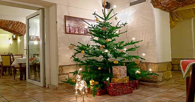 Weihnachtsbaum container dresden 2019